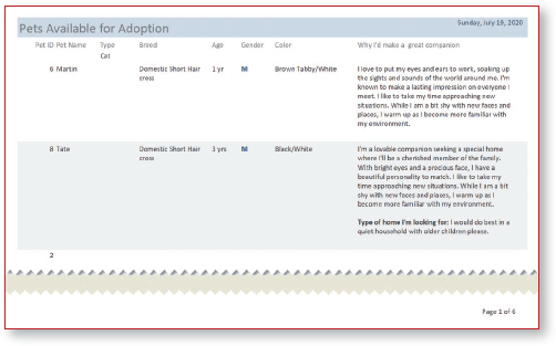Report excerpt displays header, two records in detail section, and page number in footer.